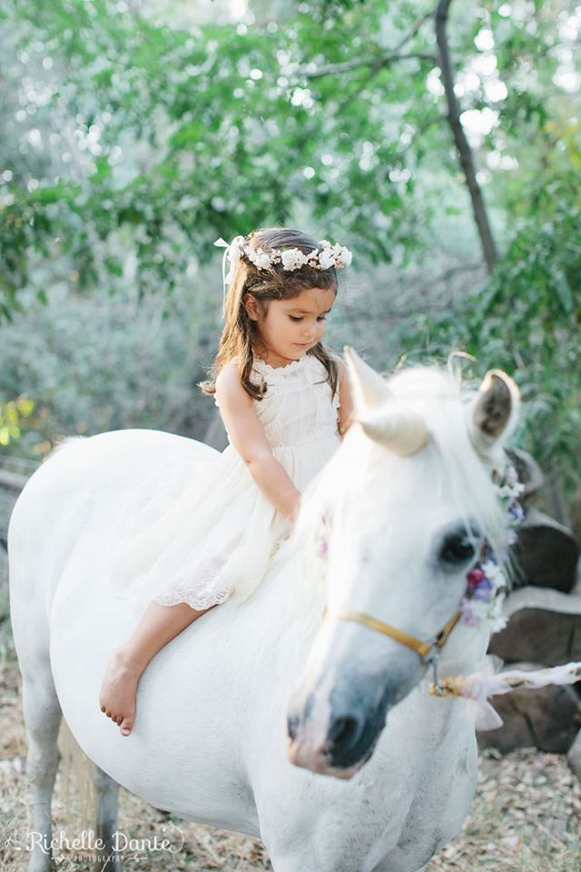 Ponies For Parties Carriage Rides Miniature Horse Rides