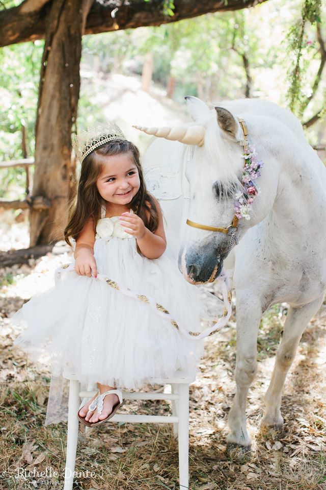 Ponies for parties, carriage rides, miniature horse rides ...
